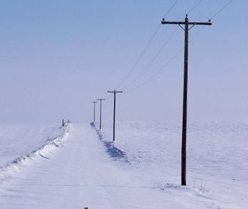 Cellular Freeze Alarm: Does it exist?