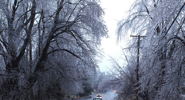A Dozen Ways to Prepare for the Next Winter Power Outage